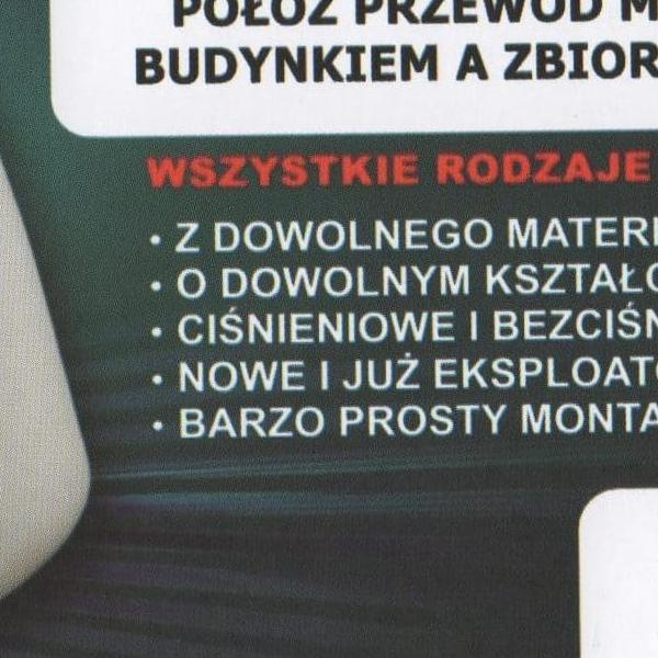 sygnalizator
